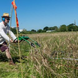 Artist Christopher Jelley mowing Longrun Meadow Labyrinth in Taunton for The Great Get Together - June 2017